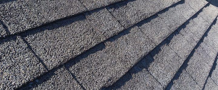 Roof Blisters Vs Delamination